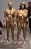 Femme phallique et homme feminin